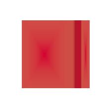 Werbegeschenk in verschiedene größen rotes Notizbuch-Myrix